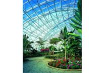 伊人香蕉av在钱森林动物园二期热带雨林馆4