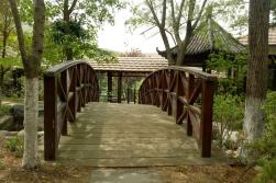 伊人香蕉av在钱唐风温泉园林景观工程